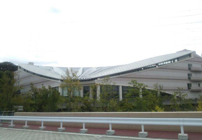 ヨネッティー王禅寺