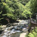 浄蓮の滝 天城国際鱒釣場