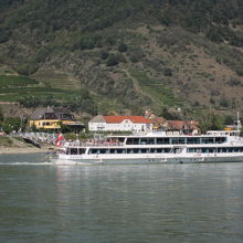 ドナウ川遊覧船 (ワッハウ線)