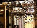 柳川ゲストハウスほりわり 写真