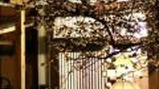 柳川ゲストハウスほりわり
