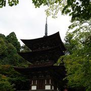 国宝の三重塔や苔の庭園が素晴らしい