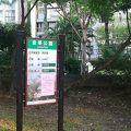 写真:金華公園