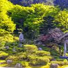 国指定 名勝『萬徳寺 庭園』