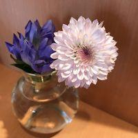 おもてなしのお花