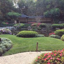 珍しい花や植物の宝庫!日本庭園でまったりするのも気持ち良い。