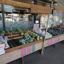 地元の野菜も売られています。