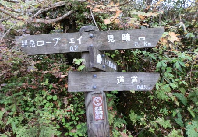 手頃な散策コースです。