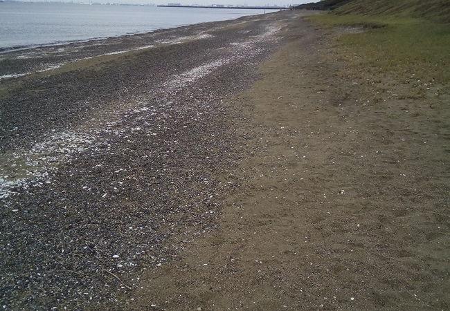 いなげの浜