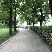 大修道院への道