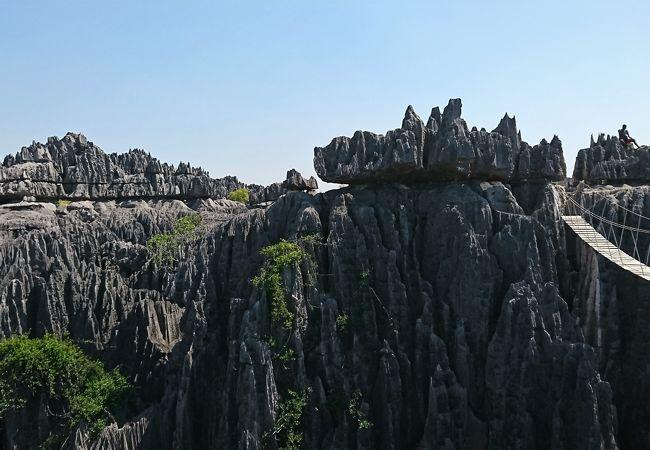 ツィンギ デ ベマラ厳正自然保護区