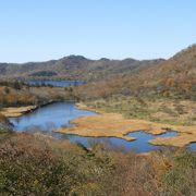 赤城山の麓にある高度1400mの湿原