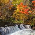 写真:さくらの滝