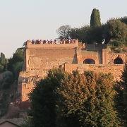 チルコ・マッシモから見上げたパラティーノの丘は美しいです!