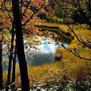のんびり湖畔周遊