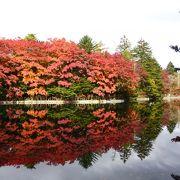 紅葉の絶景ポイント