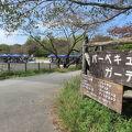 写真:昭和記念公園 バーベキューガーデン