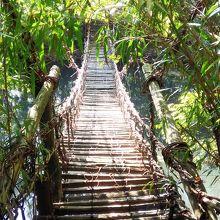 かづら橋 怖かったです(>_<)