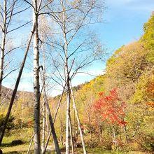 途中の山々は紅葉で色づいている