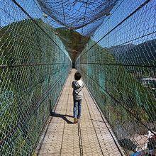 奈良洞川温泉にある吊り橋