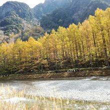 川岸は紅葉で染まる