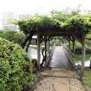 浜離宮恩賜庭園 お伝い橋
