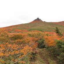 紅葉の名所、晴天予報でしたが、曇ってしまって残念でした。