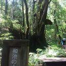 但馬高原植物園ー瀞川平ー