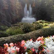 ビクトリアの観光名所。10月でも綺麗でした♪アフタヌーン・ティは、要予約です。