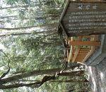 岩国城山自然休養林遊歩道