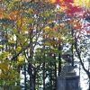 紅葉の比叡山
