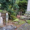 写真:青林寺 布袋像