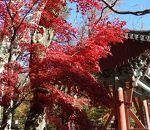 海印寺 (八萬大蔵経)