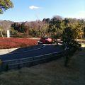 写真:豊田市交通安全学習センター