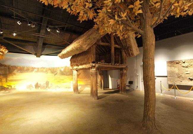 長野県の歴史が一目でわかる博物館