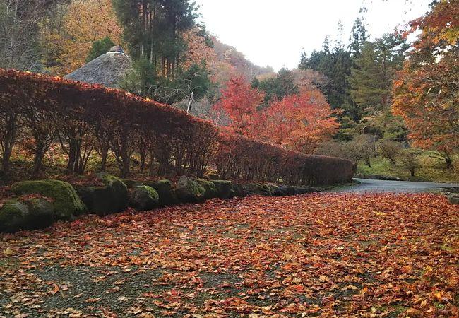 栃木 観光 スポット