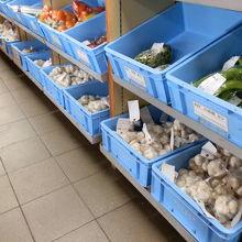 青森県の特産品ニンニクをたくさん販売していました。