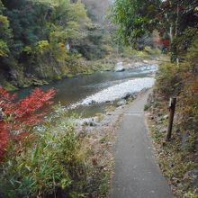 多摩川に沿っての遊歩道で比較的歩きやすかったです。