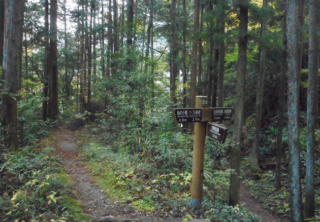 御岳渓谷周辺ハイキングコース