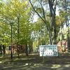 秋の世田谷公園