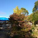 乾坤院庭園