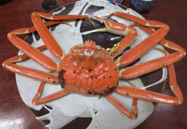黄色タグのブランド蟹♪