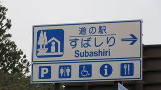 東富士五湖道路の須走ICのすぐ横にあり、専用に近い流入路もあり高速道路のSAの様な道の駅でした