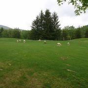 ゴルフをしない人も楽しめるコース