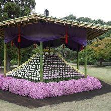 今は菊展が開催されてます。