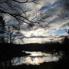 人の気配もなく静かな池のある公園
