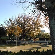 リーズナブルで交通公園や乗り物、観覧車のある公園