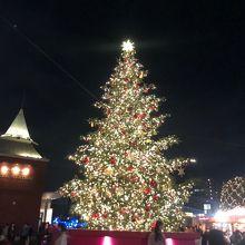 大きくて綺麗なクリスマスツリー