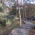 ポーラ美術館 風の遊ぶ散歩道