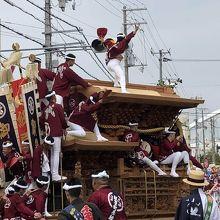 岸和田だんじり祭り  私のルーツです
